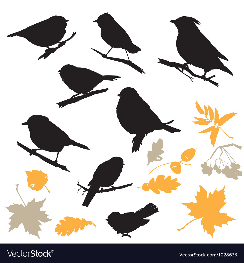 Birds and plants silhouettes vector | Price: 1 Credit (USD $1)