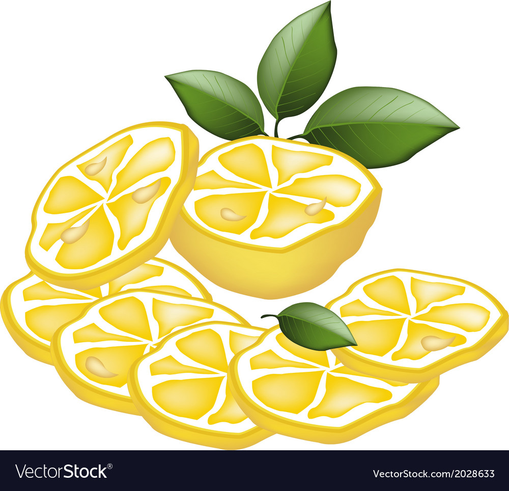 Half and sliced of lemon on white background vector | Price: 1 Credit (USD $1)