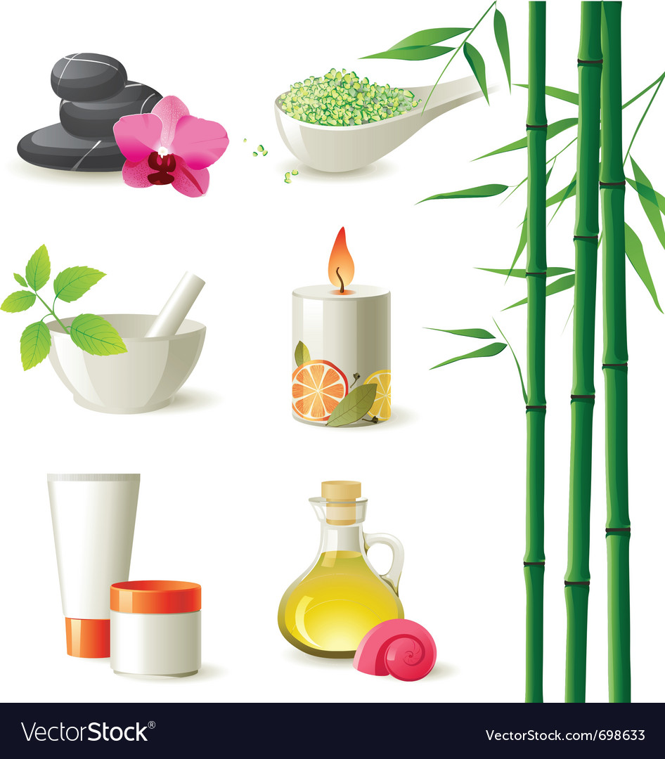 Highly detailed spa icons set vector | Price: 3 Credit (USD $3)