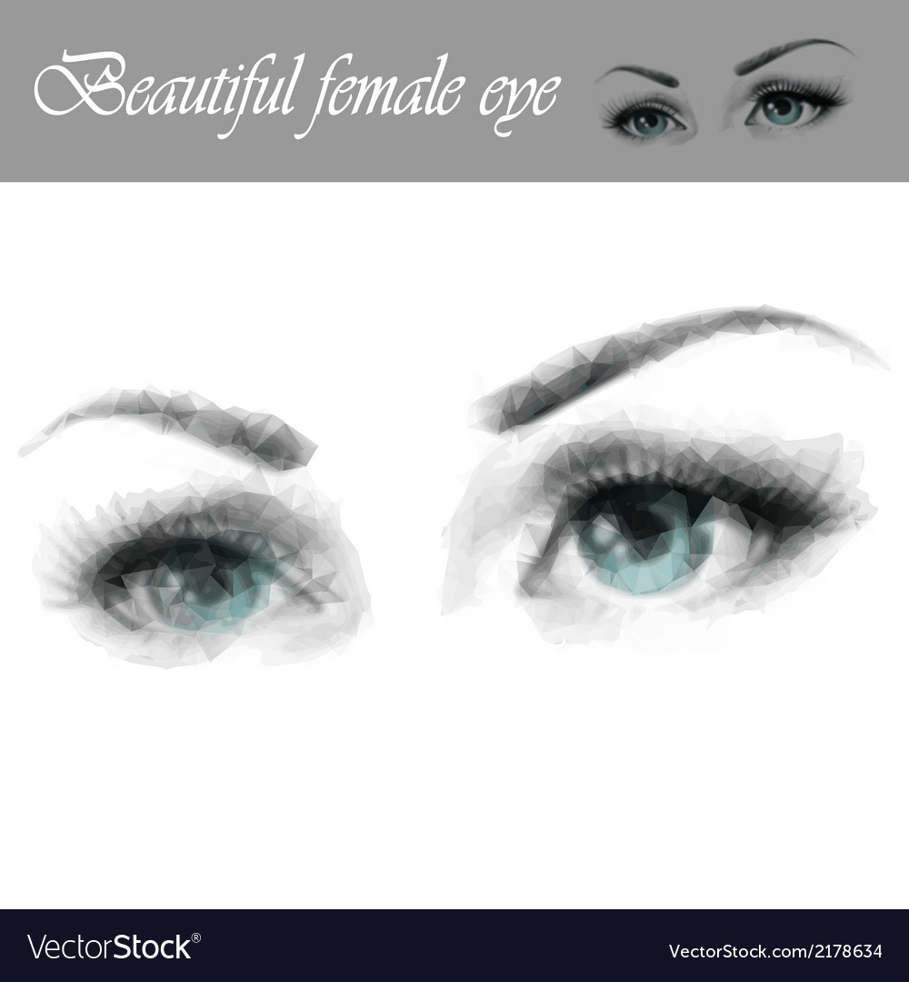 Beautiful female eye vector | Price: 1 Credit (USD $1)