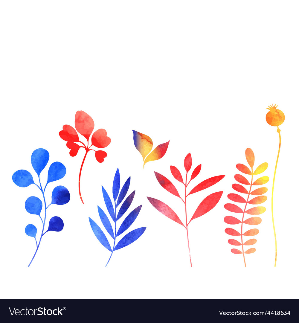 Set of watercolor plants vector | Price: 1 Credit (USD $1)
