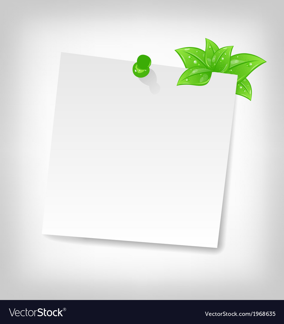 Blank note paper with green leaves and space for vector | Price: 1 Credit (USD $1)