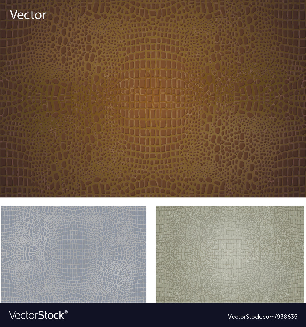 Crocodile skin texture vector | Price: 1 Credit (USD $1)