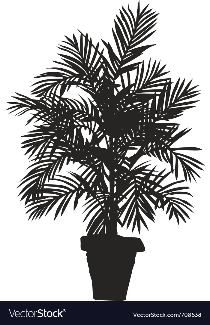 Palm tree silhouetter vector | Price: 1 Credit (USD $1)