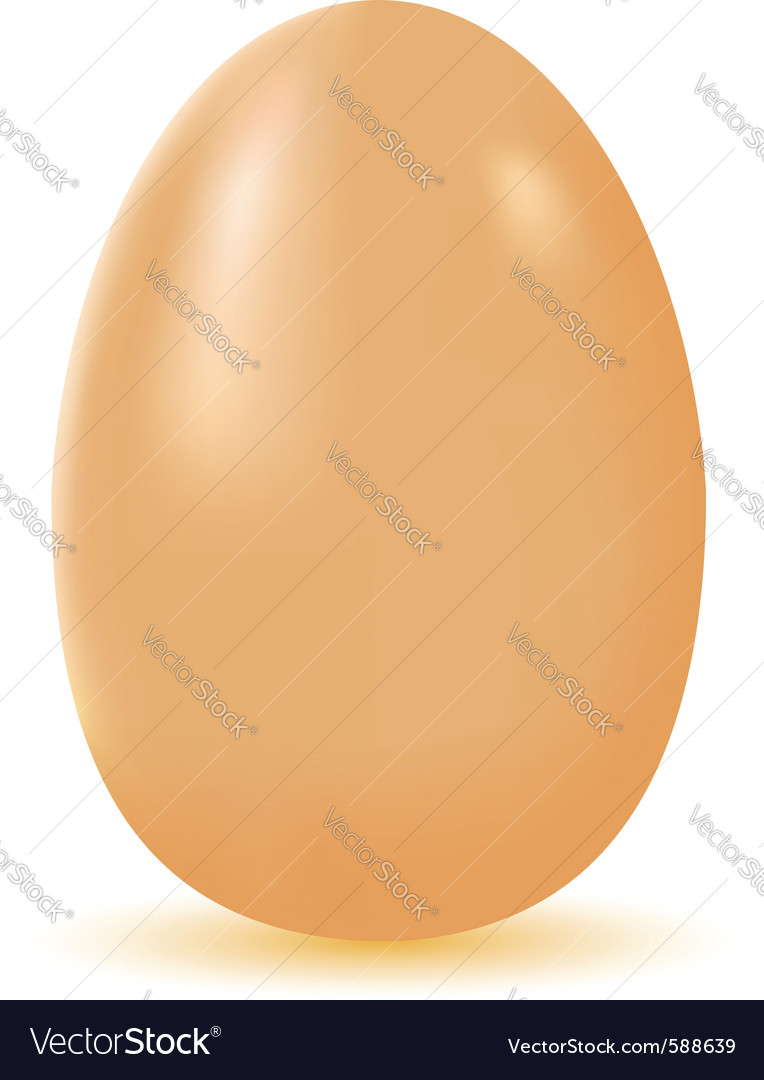 Egg isolated vector | Price: 1 Credit (USD $1)