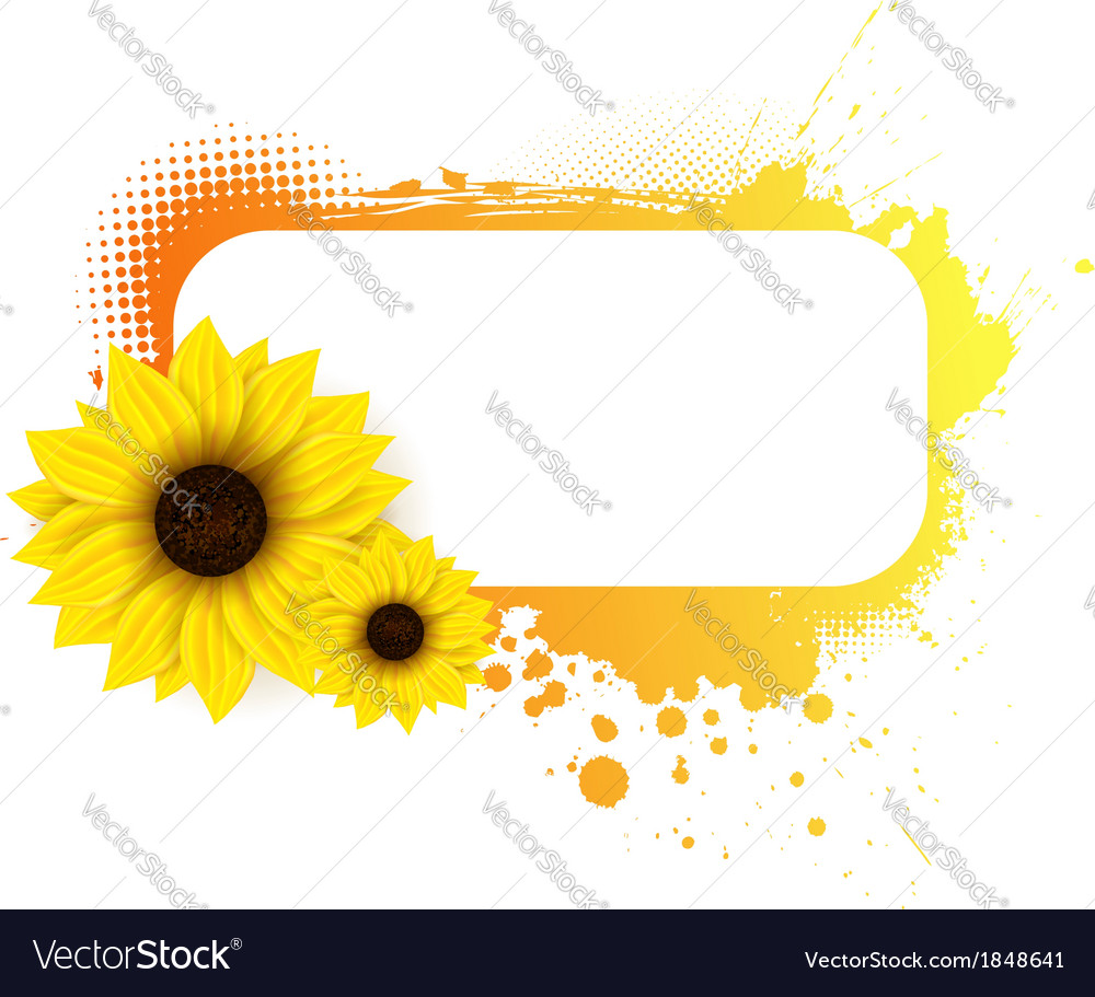 Sunflower grunge frame vector | Price: 1 Credit (USD $1)