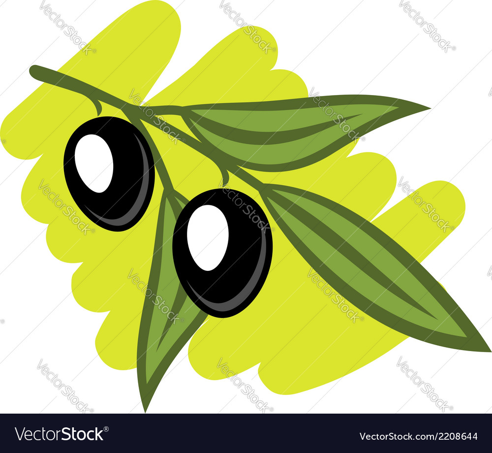 Leafy twig with two black olives vector | Price: 1 Credit (USD $1)