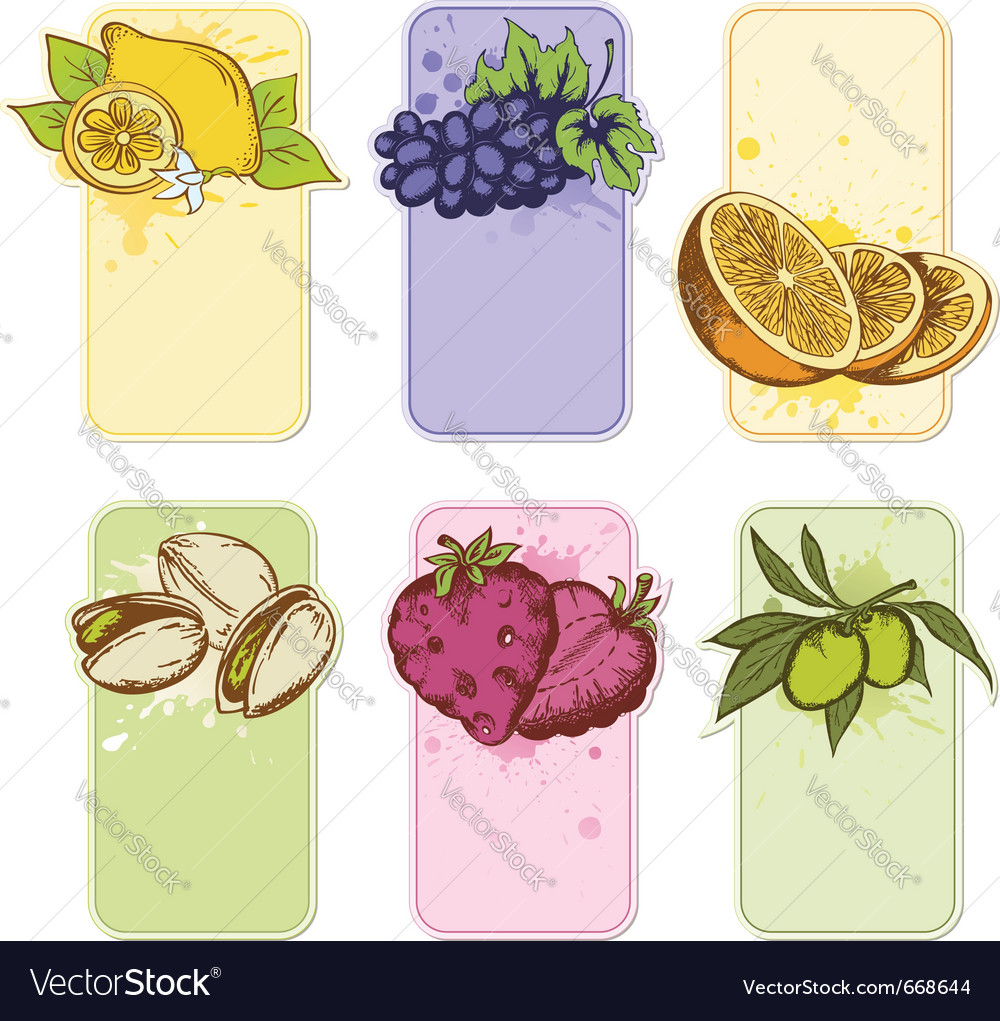 Set of hand drawn fruit labels vector | Price: 1 Credit (USD $1)