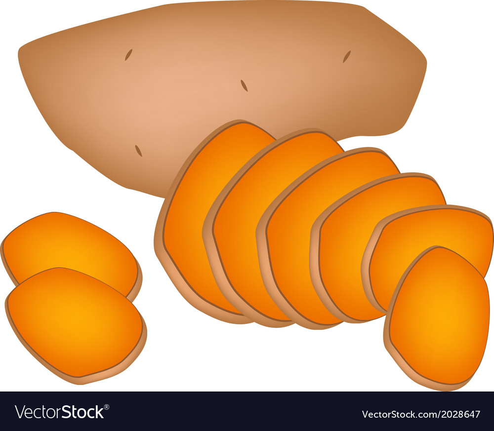 Delicious fresh sweet potatoes on white background vector | Price: 1 Credit (USD $1)