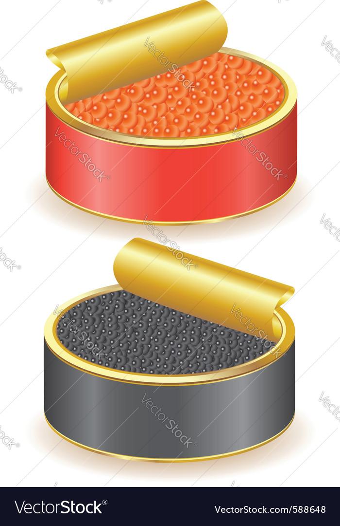 Black caviar vector | Price: 1 Credit (USD $1)
