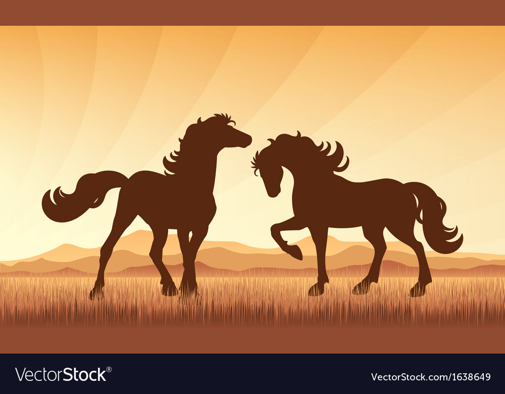 Horses on field on sunset background vector | Price: 1 Credit (USD $1)