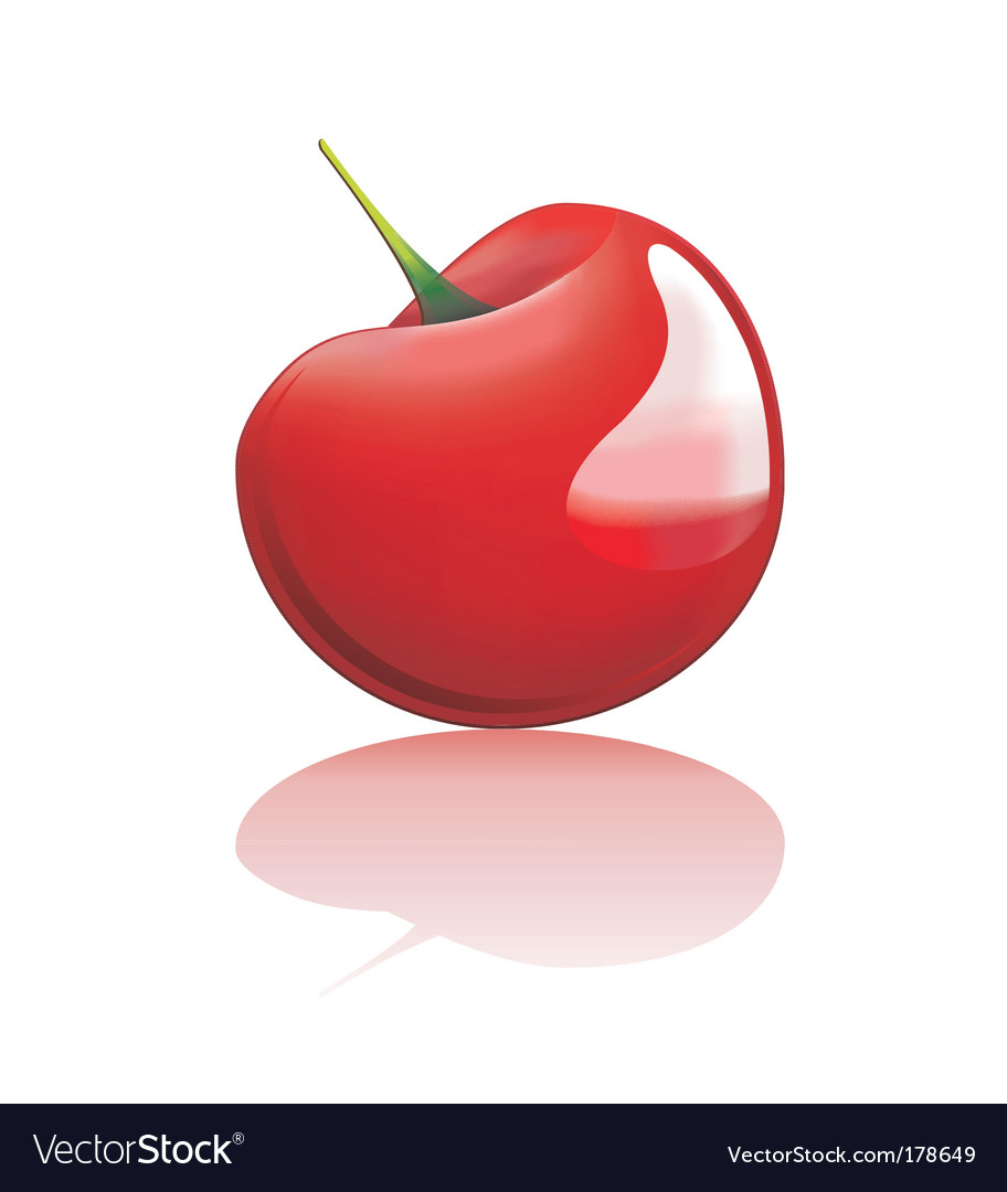 Red cherry vector | Price: 3 Credit (USD $3)