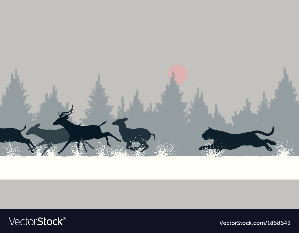 Tiger chasing deer vector | Price: 1 Credit (USD $1)
