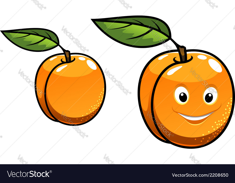 Cute happy orange apricot fruit vector | Price: 1 Credit (USD $1)