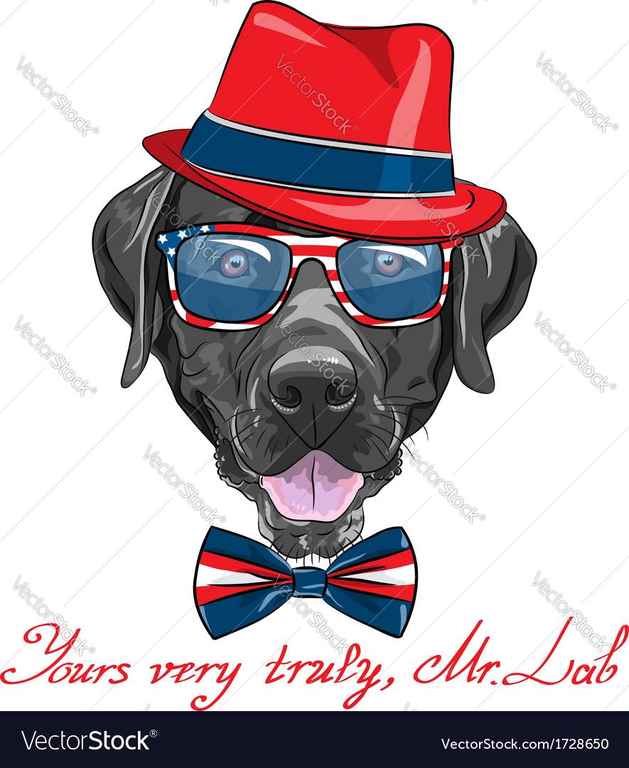 Hipster dog breed labrador retriever vector   Price: 3 Credit (USD $3)