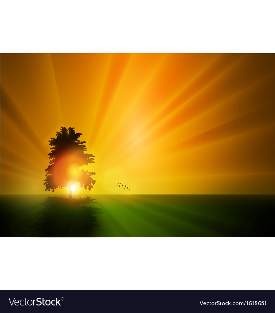 Sunset landscape vector | Price: 1 Credit (USD $1)