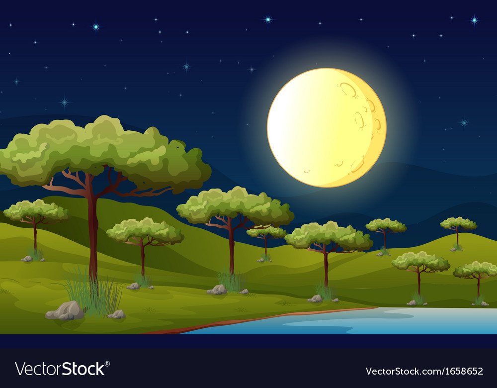 A bright fullmoon lighting the forest vector | Price: 3 Credit (USD $3)