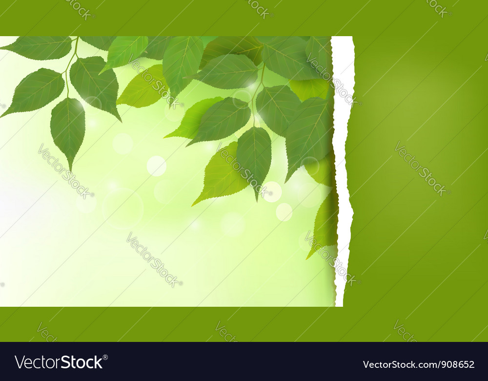 Nature background vector | Price: 3 Credit (USD $3)