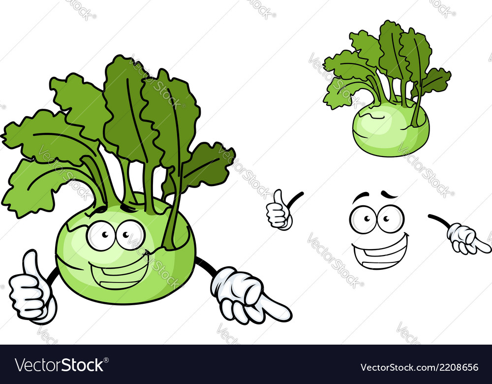 Fun cartoon kohlrabi vegetable vector | Price: 1 Credit (USD $1)