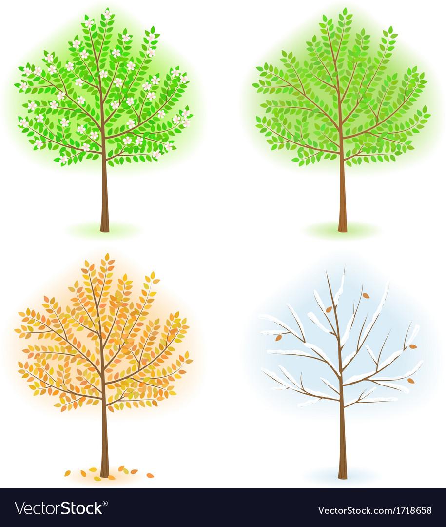 Season trees vector   Price: 1 Credit (USD $1)