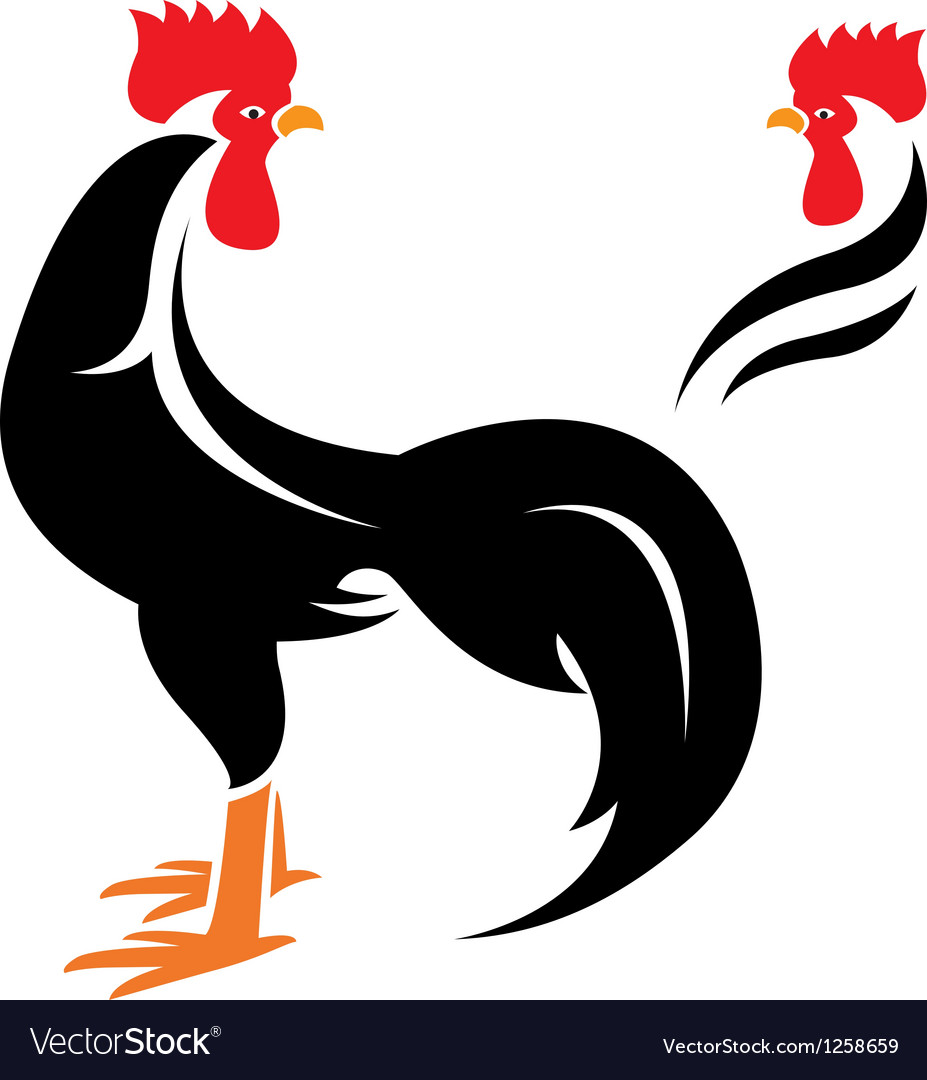Cock vector | Price: 1 Credit (USD $1)