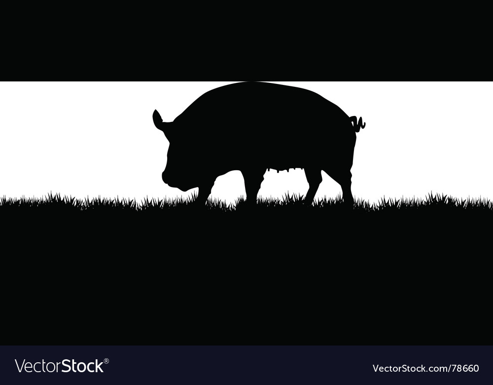 Pig meadow vector | Price: 1 Credit (USD $1)