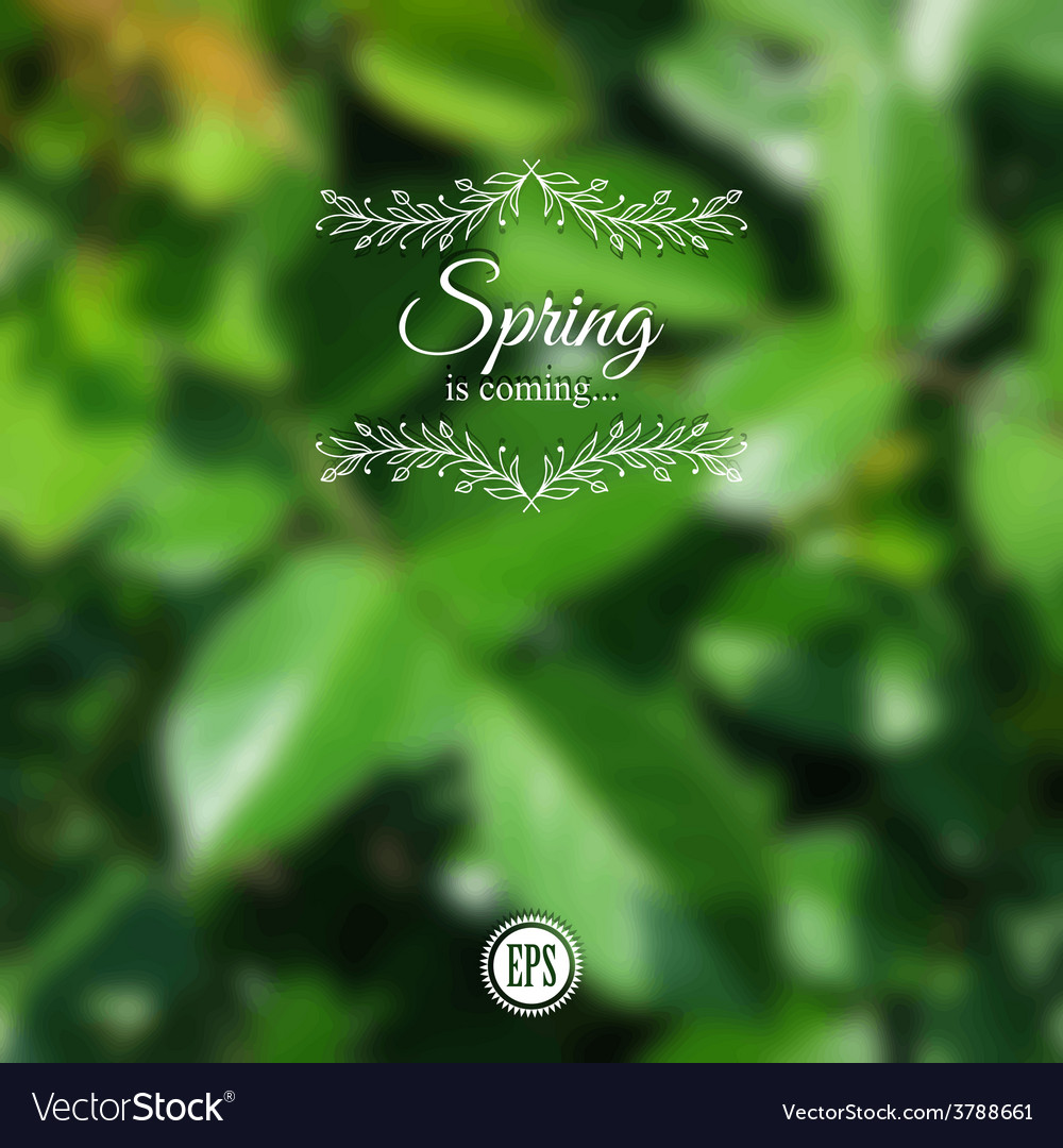 Blurred spring background with branch and green vector | Price: 1 Credit (USD $1)