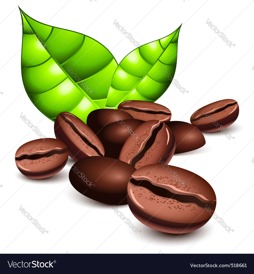 Coffee beans vector | Price: 3 Credit (USD $3)