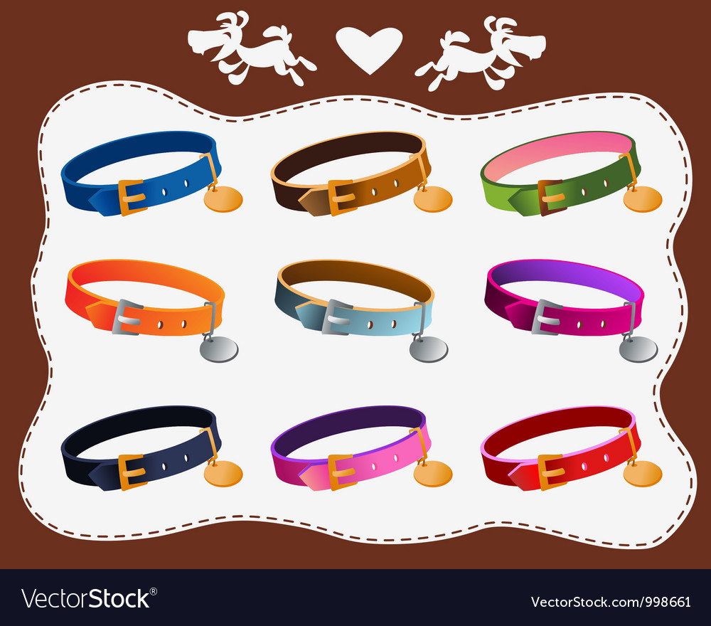 Collars for dogs vector | Price: 1 Credit (USD $1)