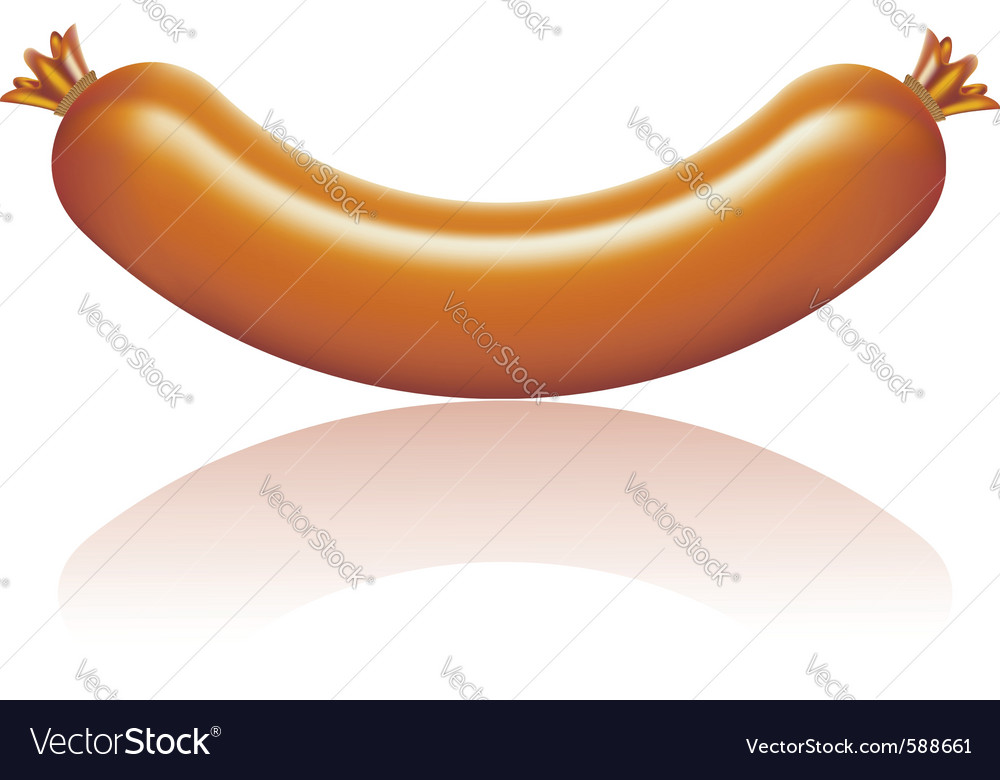 Sausage isolated vector | Price: 1 Credit (USD $1)