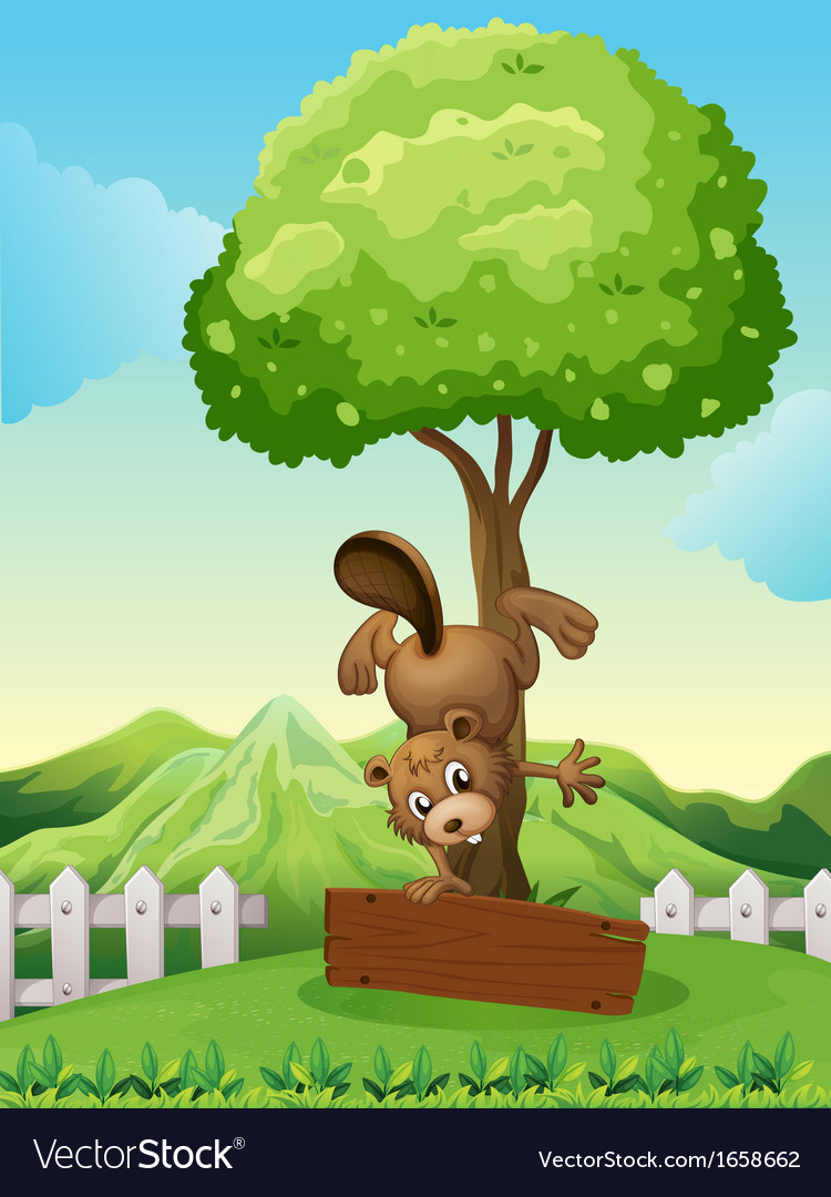 A beaver doing a handstand above the empty wooden vector | Price: 3 Credit (USD $3)