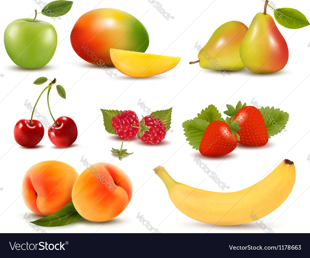 Big set of different fresh fruit and berries vector | Price: 3 Credit (USD $3)