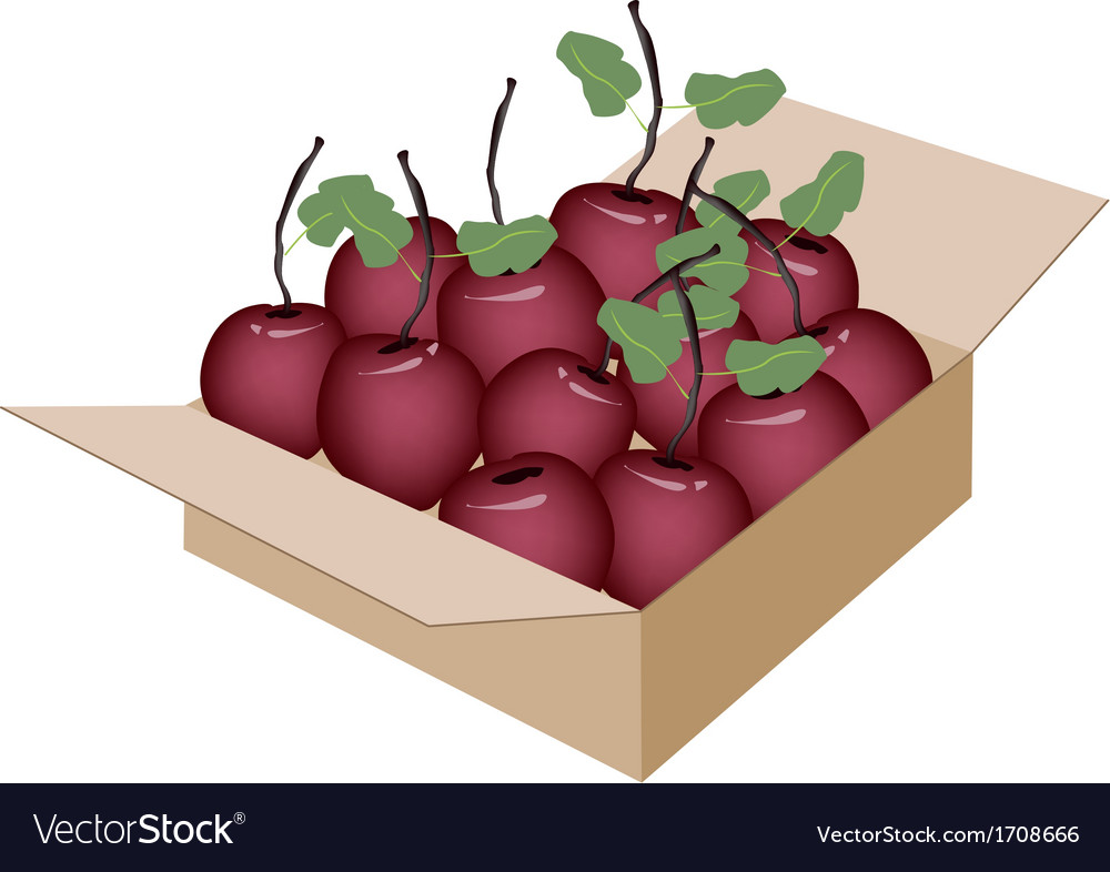 Sweet fresh apple in a shipping box vector | Price: 1 Credit (USD $1)