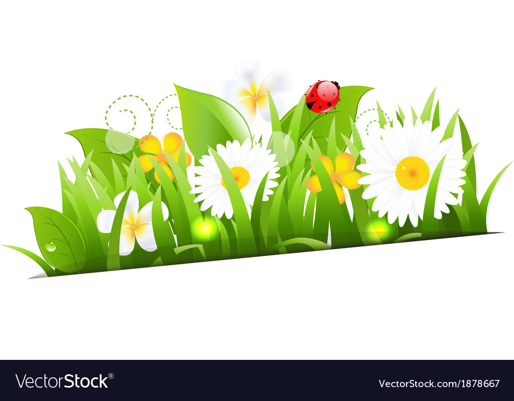 Bunch of flowers with grass and ladybug vector | Price: 1 Credit (USD $1)