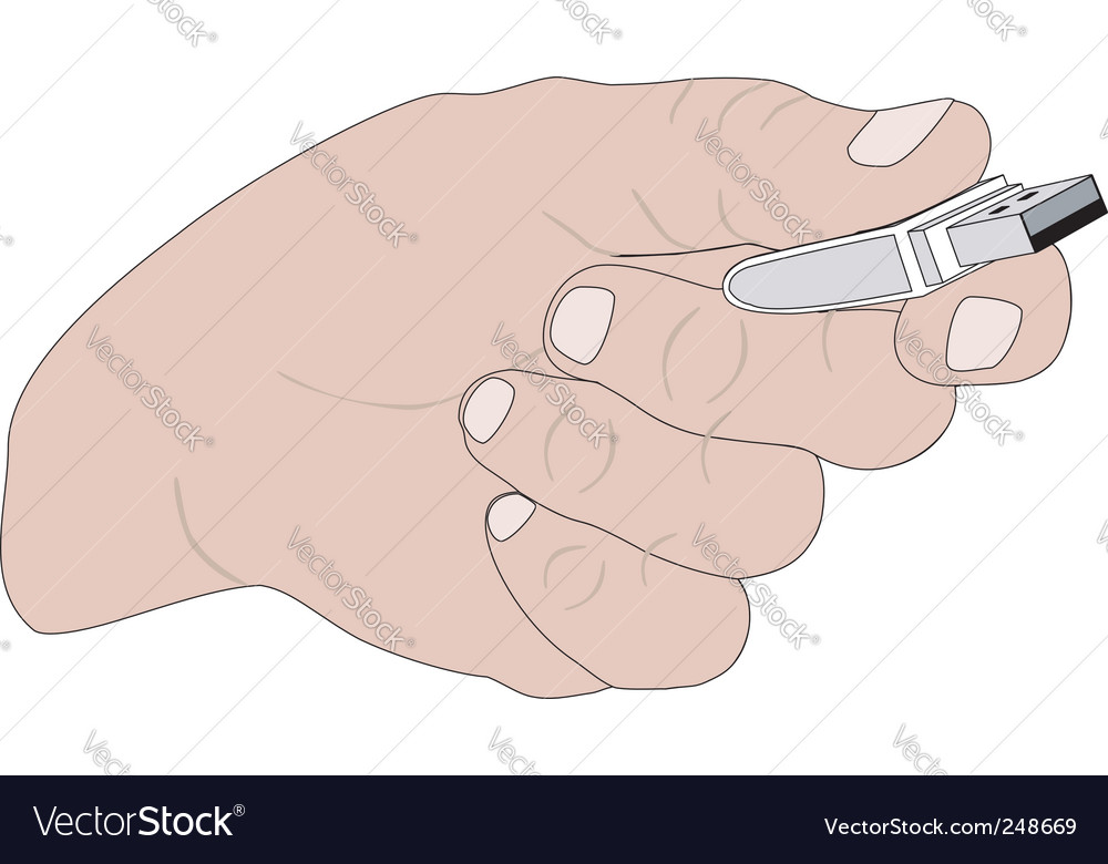 Hand with flash memory vector | Price: 1 Credit (USD $1)
