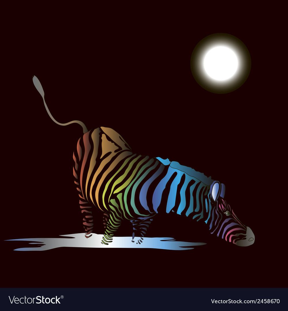 Zebra with colored stripes vector | Price: 1 Credit (USD $1)