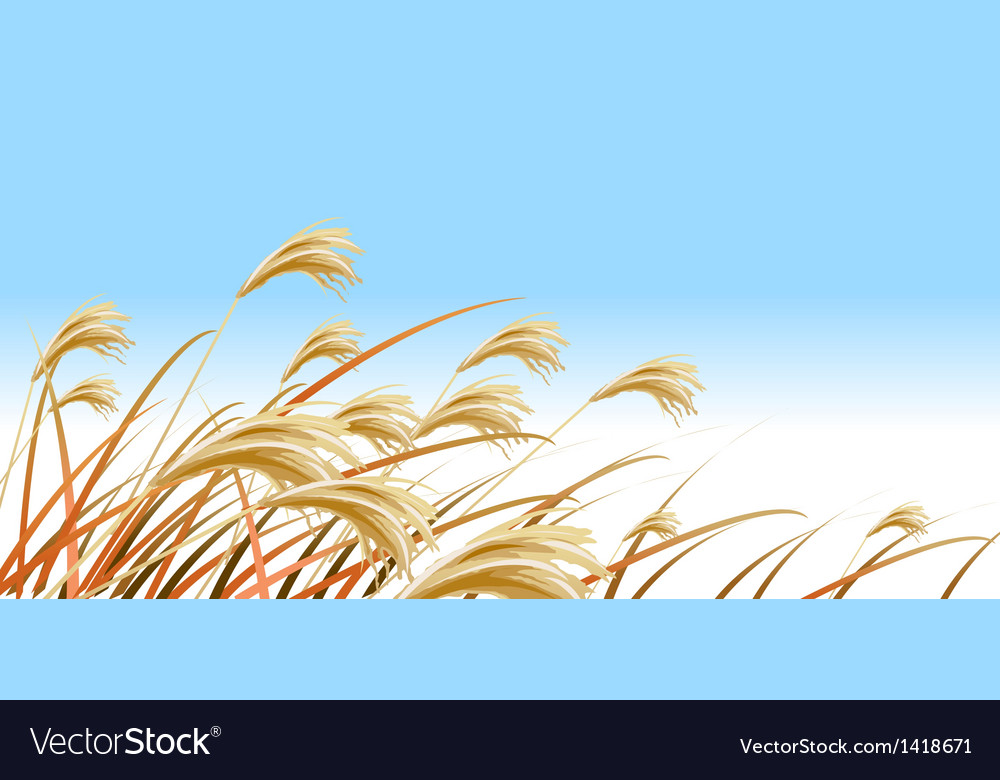 Grass blades against blue sky vector | Price: 1 Credit (USD $1)
