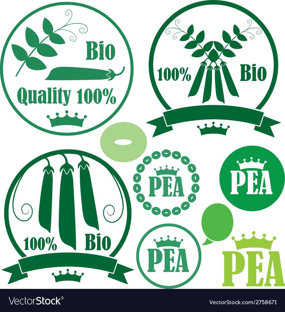 Pea vector | Price: 1 Credit (USD $1)