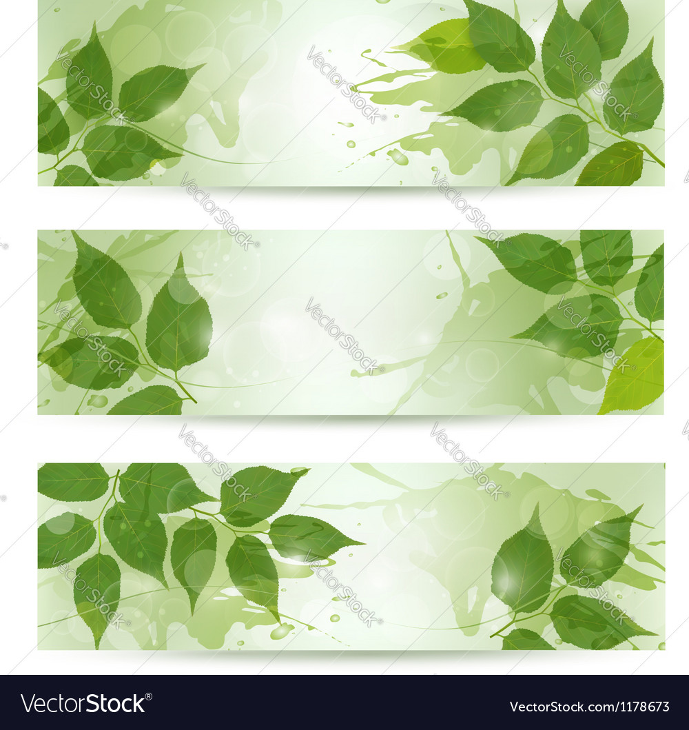 Three nature background with green spring leaves vector | Price: 1 Credit (USD $1)