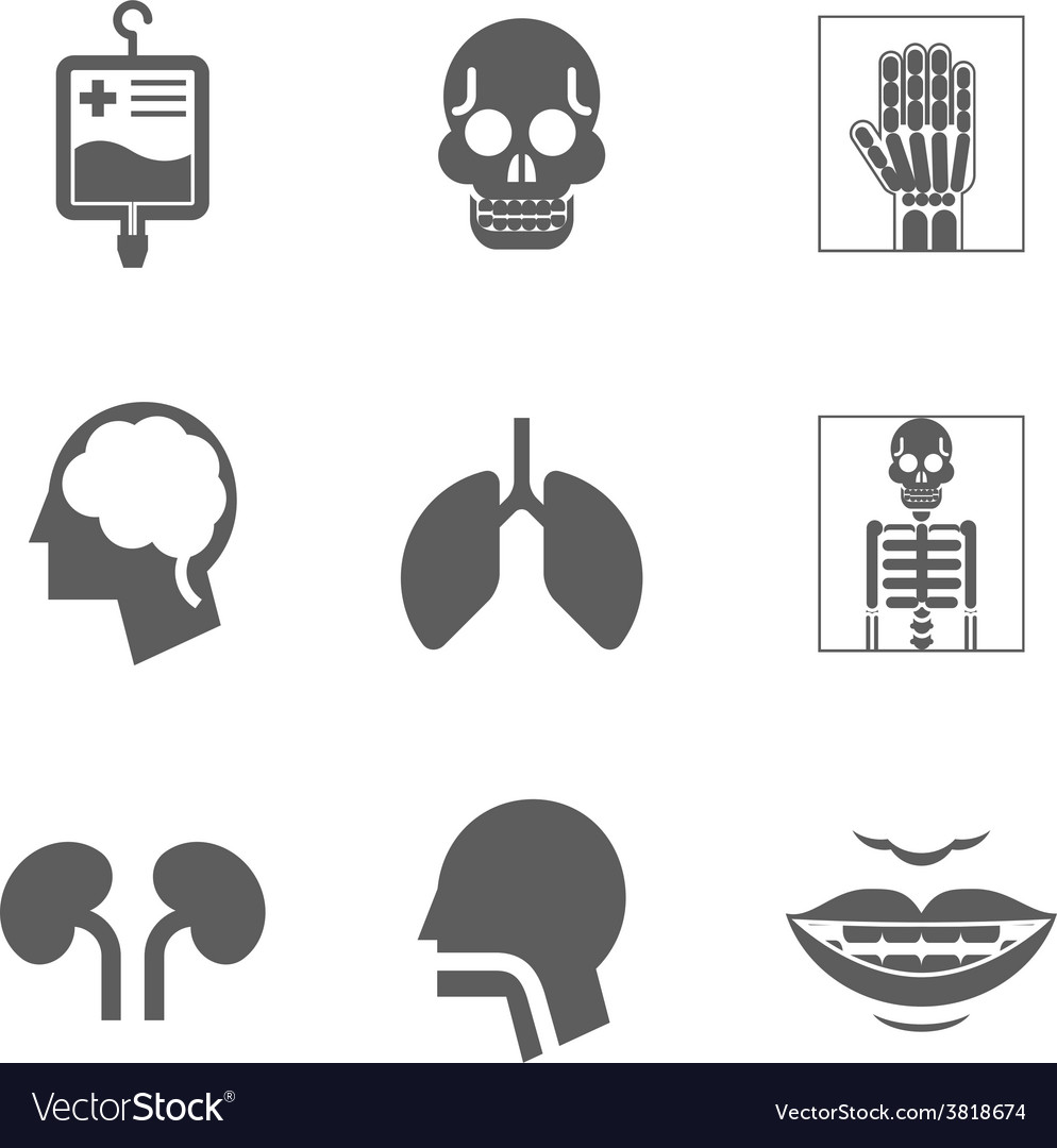 Medical care and health isolated icons vector | Price: 1 Credit (USD $1)