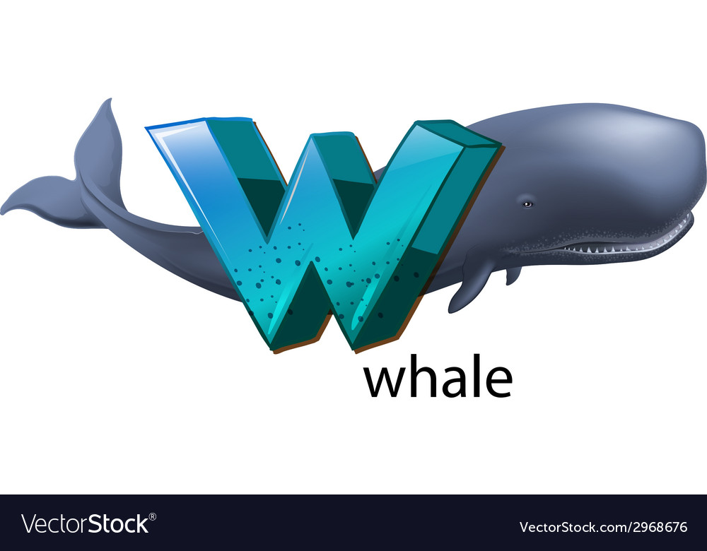 A letter w for whale vector | Price: 1 Credit (USD $1)