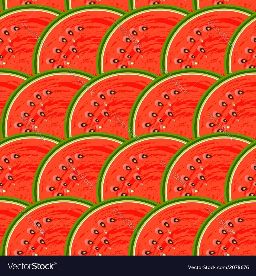 Watermelon fruit vector | Price: 1 Credit (USD $1)