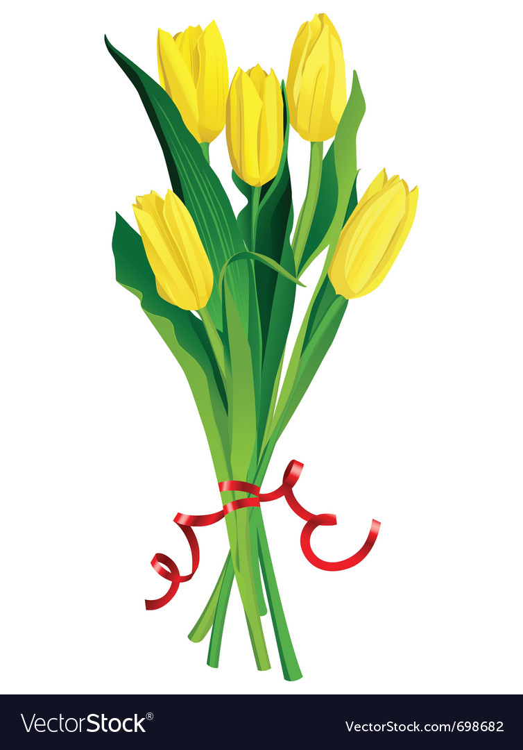 Yellow tulips bouquette over white background vector | Price: 1 Credit (USD $1)