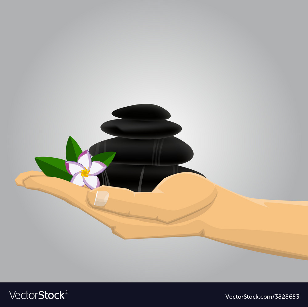 Hand holding spa stones andflower vector   Price: 1 Credit (USD $1)