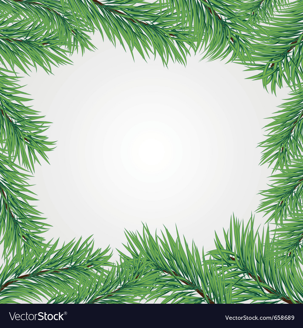 Frame with christmas tree branch vector | Price: 1 Credit (USD $1)