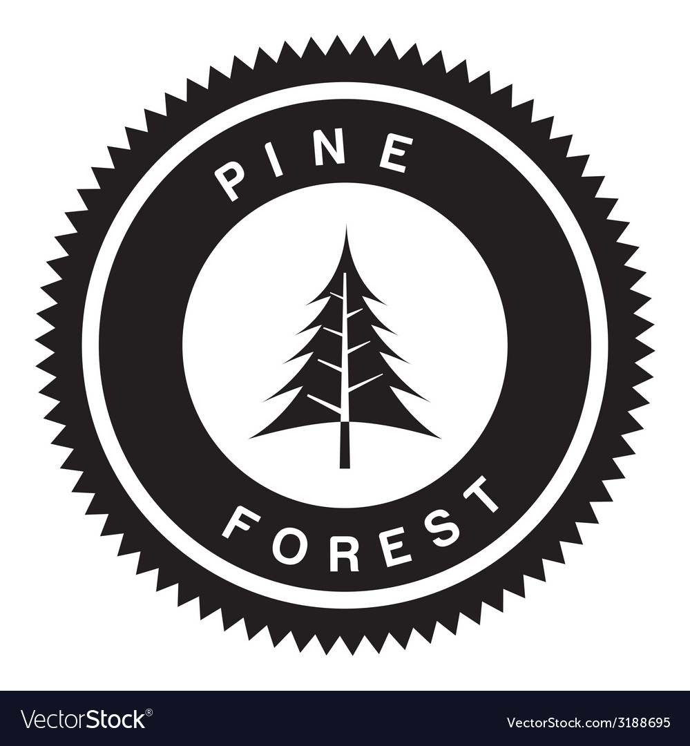 Pine forest design vector | Price: 1 Credit (USD $1)