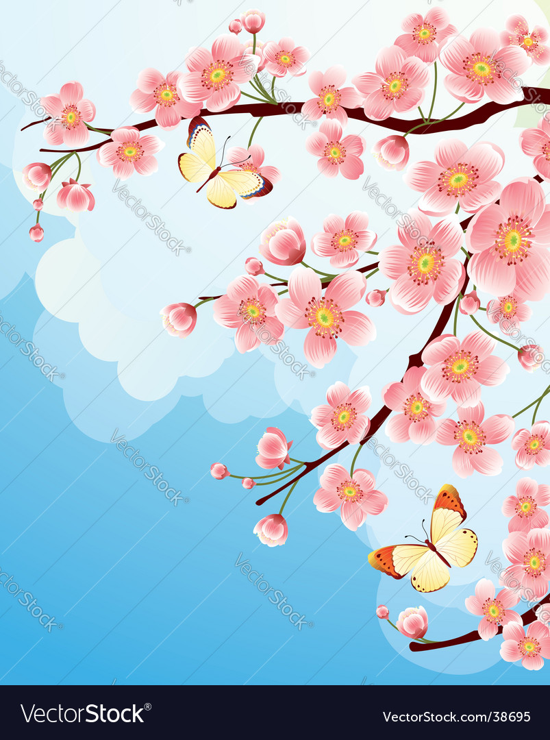 Sakura cherry blossom vector | Price: 3 Credit (USD $3)