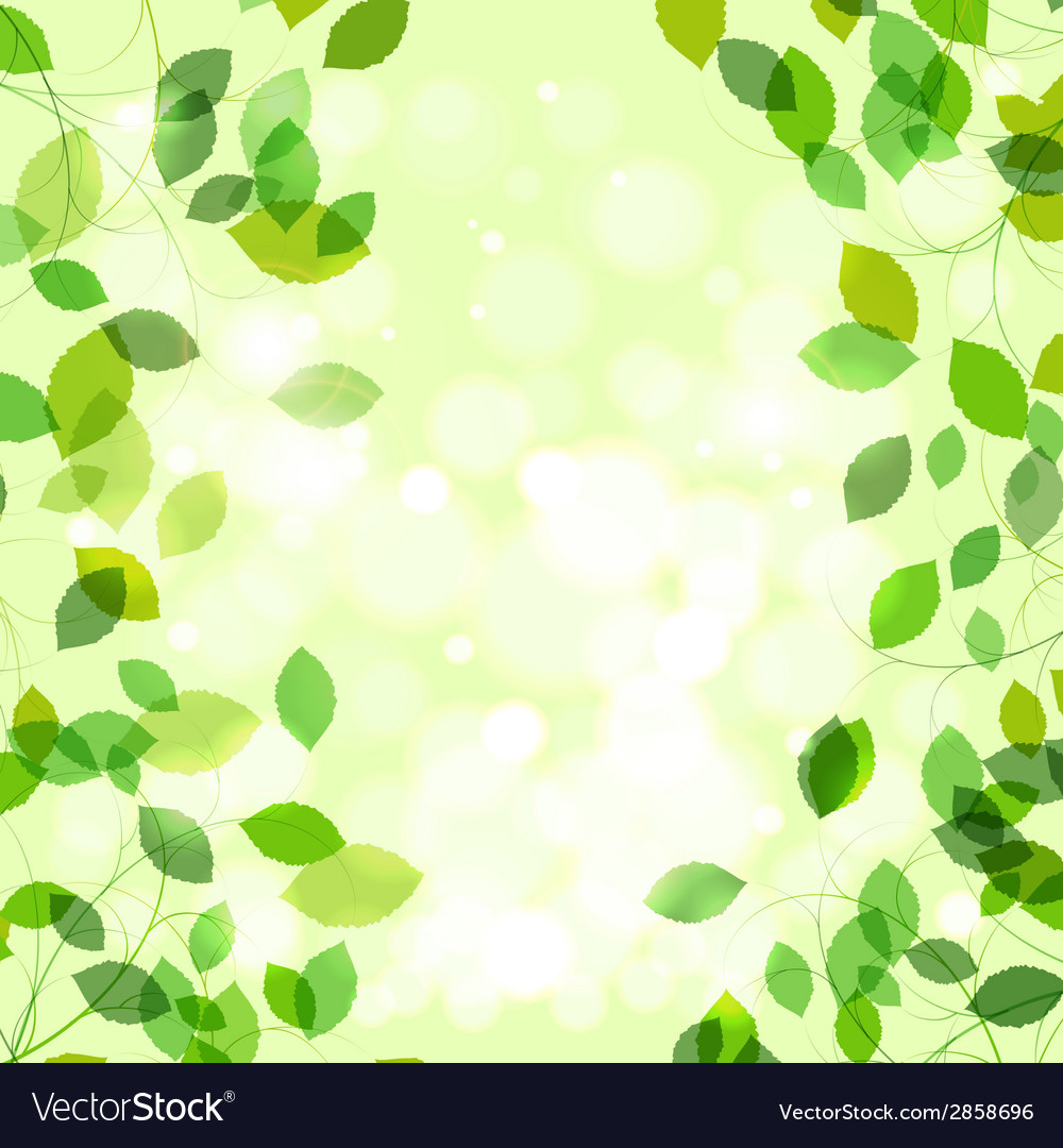 Summer branches with fresh green leaves vector | Price: 1 Credit (USD $1)