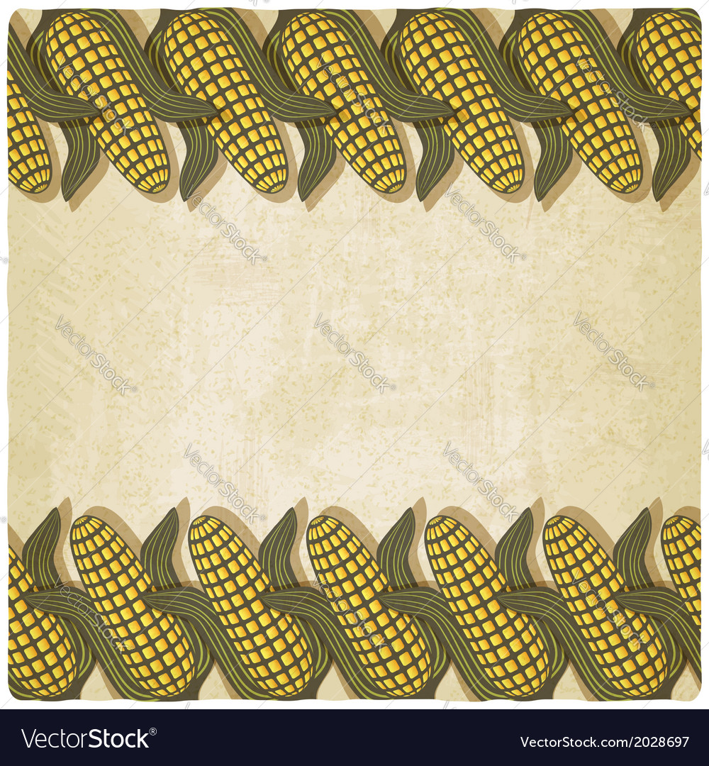 Corn frame old background vector | Price: 1 Credit (USD $1)