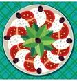 Caprese salad on plate vector